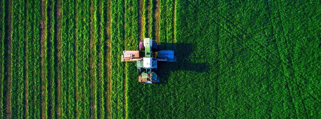 کود و ریز مغزی های کشاورزی