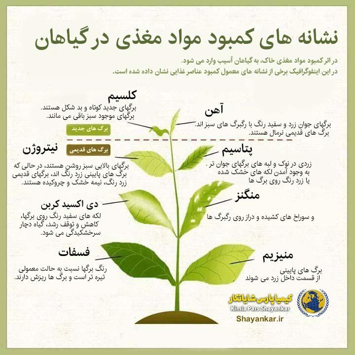 نشانه های کمبود مواد مغذی در گیاهان