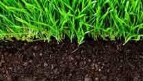 آیا می دانستید خاک