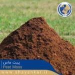 پیت ماس Peat Moss