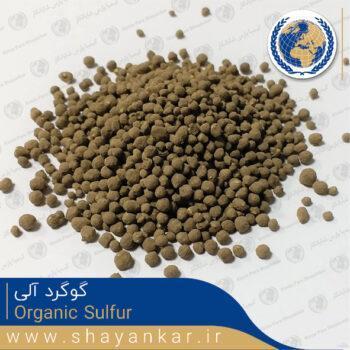 گوگرد آلی Organic Sulfur