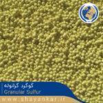 گوگرد گرانوله Granular Sulfur